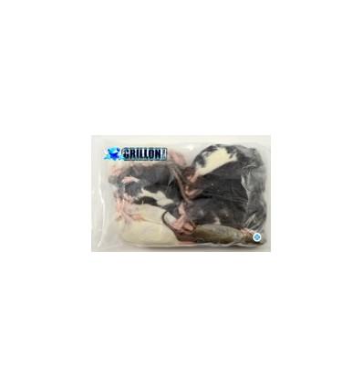 Rats congelés Taille S 26 à 50g en sac de 10