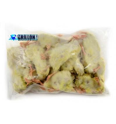 Poussins congelés en sac 1 Kg