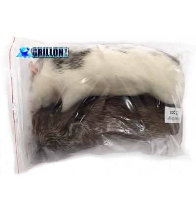 6 Rats congelés Taille XXXL +350g, 3 sacs de 2 rats