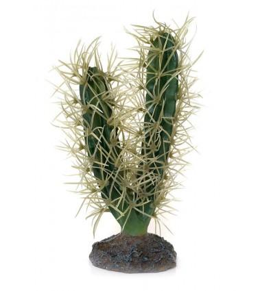 Cactus décoratif hobby
