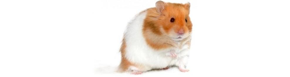 Poussins Hamsters Lapins et Gerbilles